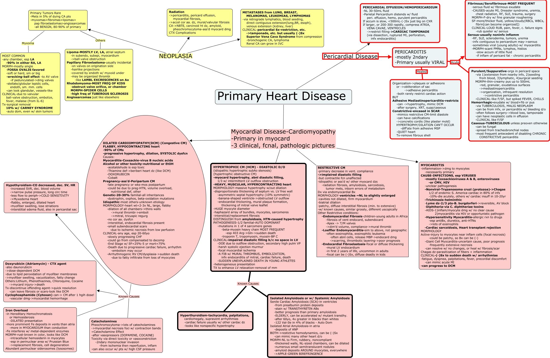 Postpartum Hemorrhage Concept Map.Primary Heart Disease
