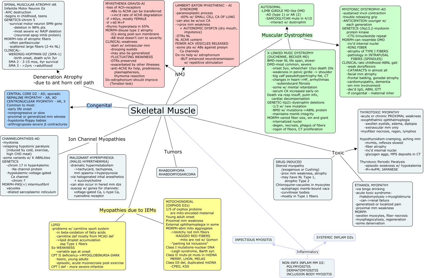 Renal Failure Concept Map.Skeletal Muscle