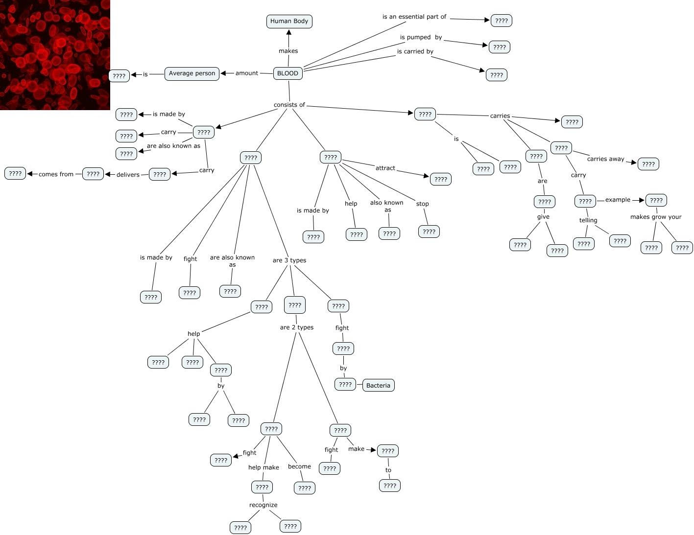 mind maps with What C2 B4s 20blood 20mindmap on 5c Sandra's Mind Map besides Pharmacology Mindmaps together with Mind maps additionally Unit III PowerPoint Presentations likewise Map.