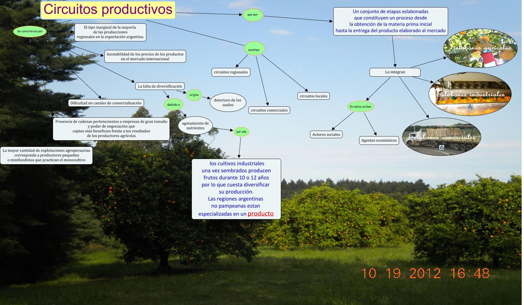 Circuito Yerba Mate : Circuito productivo