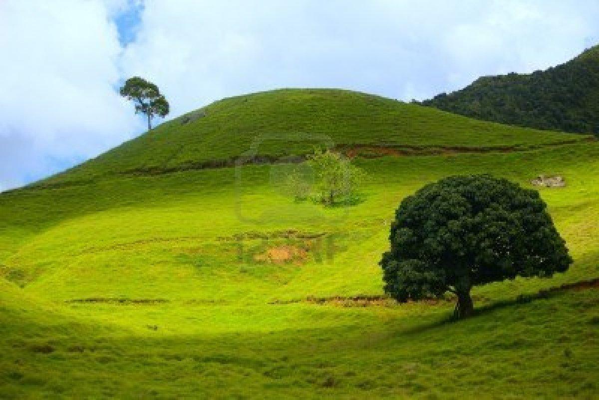 Le colline for Piani di serra in collina
