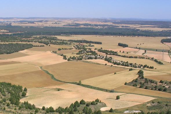 Resultado de imagen de paisaje de llanura primaria